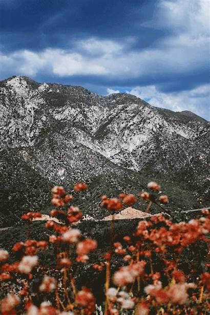Mountain Mountains Gifs California Forest Aesthetics Spring