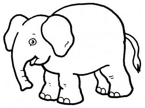 printable elephant coloring pages  kids elephant