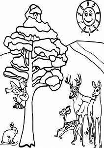 Colouring Pages Of Winter Animals: Winter animals coloring ...