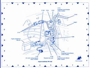 Ford Explorer V8 2005 Electrical Circuit Wiring Diagram