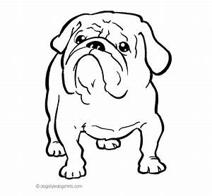 English Bulldog clipart coloring page - Pencil and in ...