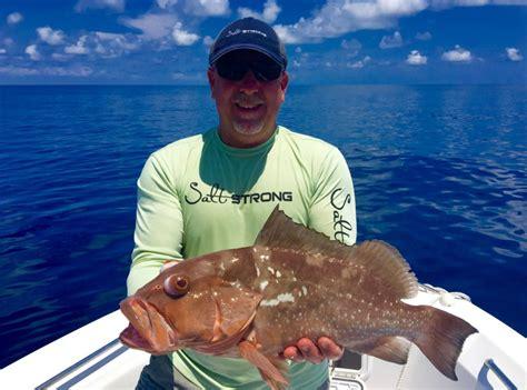 grouper fish saltwater mercury cook recipes way popular eat most levels beware strong web saltstrong