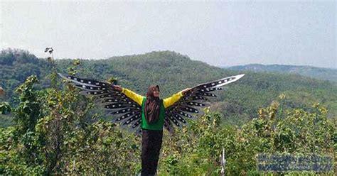 spot sayap burung hantu jadi daya tarik  bukit pandang