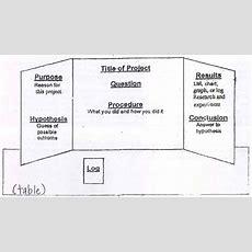 Science Fair  Basic Steps