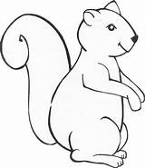 Squirrel Animal Template Templates Preschool Coloring Pages Squirrels Printable Mask Print Sheets Clipart Animals Masks Library Fall Crafts Cut Colour sketch template