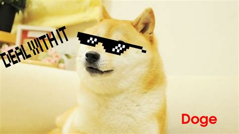 Doge background ·① Download free cool wallpapers for ...