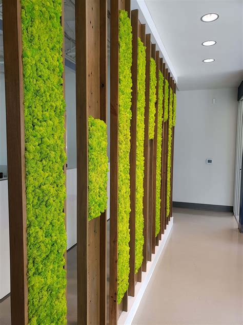 hmt engineering moss wall natura enhancing  built