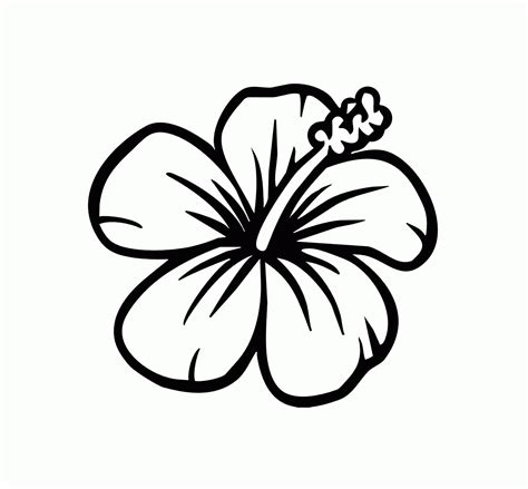 printable coloring pages  hawaiian flowers coloring home