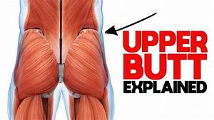 Unlock Your Glutes - What You Need To Know About The Gluteus Medius