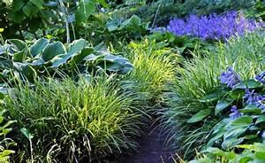 Garden Feelings Wer Steckt Dahinter : die stauden und ihre lebensbereiche gardens yard design ~ Watch28wear.com Haus und Dekorationen