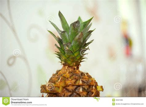 Pineapple With Leaves Royalty Free Stock Photo Image
