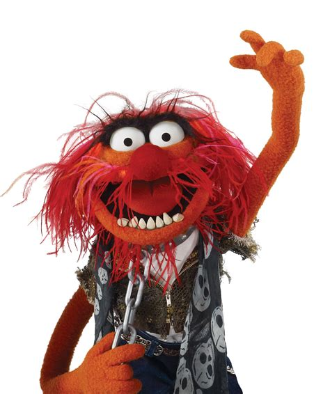 image animalclipartpng muppet wiki fandom powered