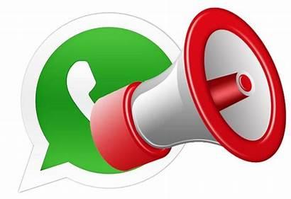 Broadcast Whatsapp Send Howtotechnaija Contacts Multiple Chat