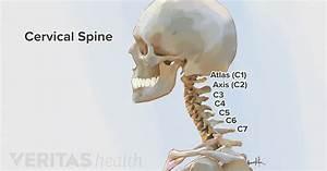 Forward Head Posture U2019s Effect On The Cervical Spine