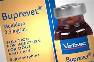 new addition to virbacs anaesthetics and analgesia range