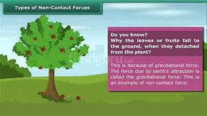 Type Of Non-contact Forces