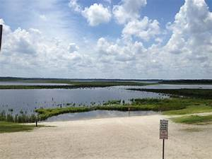 How North Florida's Lake Region Might Get Help For Its ...