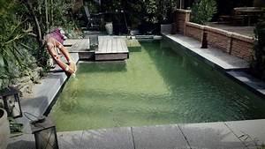 Schwimmteich Oder Pool : galabau ri e neuss schwimmteiche pools garten landschaftsbau galerie schwimmteiche bio pool ~ Whattoseeinmadrid.com Haus und Dekorationen