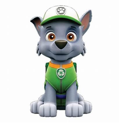 Rocky Paw Patrol Fandom Pups Wiki Characters