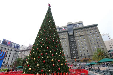 times square christmas tree time in union square makeup and