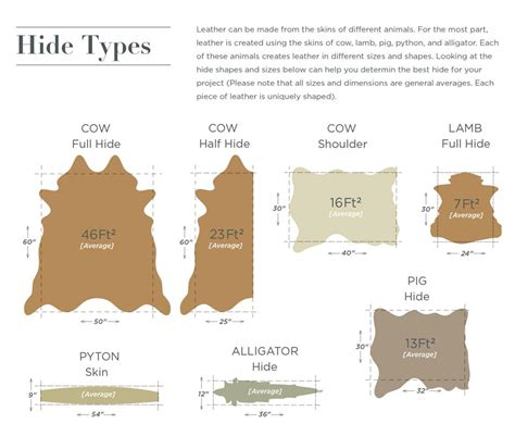 Leather Buying Guide Infographic From District Leathers