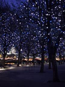 tree lighting landscape lighting lights