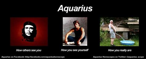 Aquarius Memes - 12 best images about zodiac memes on pinterest daily horoscope capricorn and funny