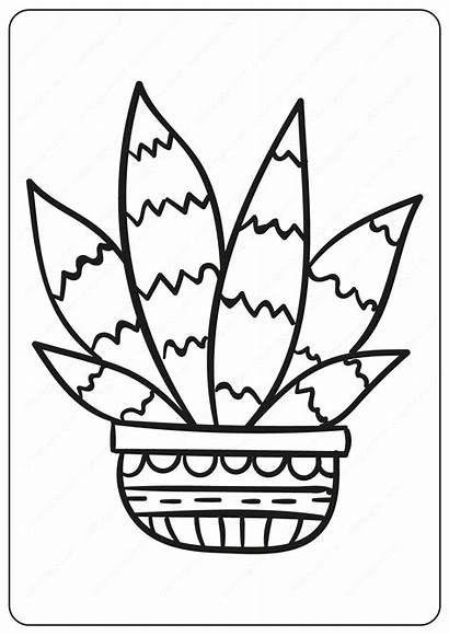 Cactus Coloring Pages Prickly