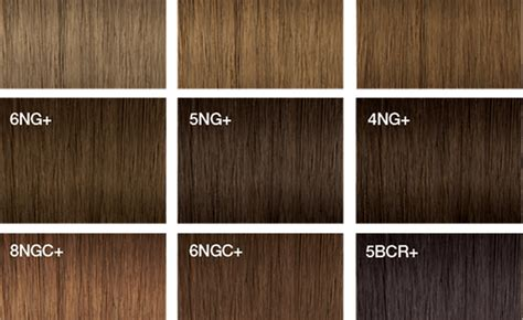 Joico Hair Color Swatches For Chocolate
