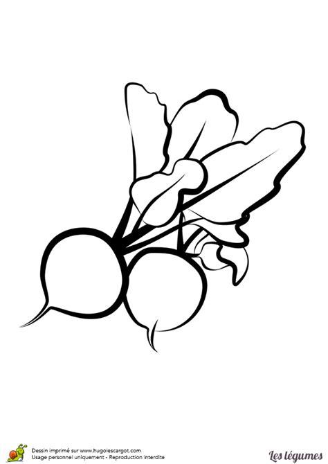 jeux cuisine de coloriage legumes radis sur hugolescargot com