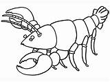 Lobster Coloring Pages Cartoon Printable Getcoloringpages Sea Facts sketch template