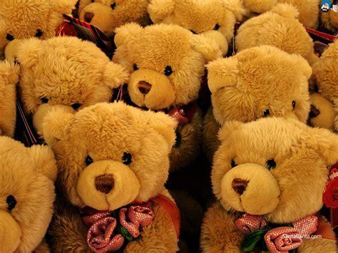 teddy bears gregory humphrey dekerivers writes book