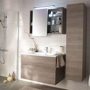 Meuble Salle De Bain Castorama : meuble de salle de bain calao castorama sdb pinterest ~ Melissatoandfro.com Idées de Décoration