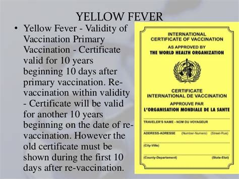 Yellow Fever Vaccination Certificate. Quickbooks Online Payment Processing. First Choice Phone Number Lower Abdomen Pains. Best Online Mortgage Companies. Non Profit Graduate Programs Rehab In Utah. Workers Compensation Ombudsman. Preferred Stock Etf Funds Check Domain Names. Graphic Design Courses Seattle. Renters Insurance Omaha Ne What Is Coherence