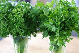 Apigenin, Found In Celery And Parsley, Could Help Fight ...