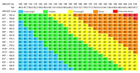 Average Bench Press Age And Weight
