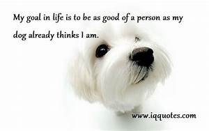 Cute Quotes About Dogs. QuotesGram