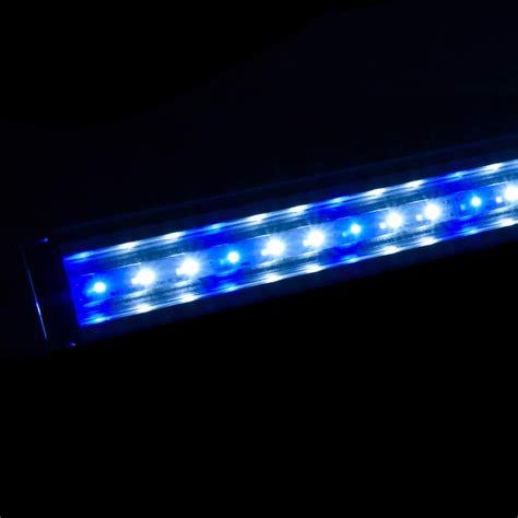 aquarium aqua led light l sea marine fish coral tank blue white 24w 120cm ebay