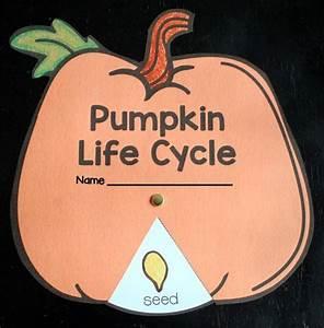 Parts Of A Pumpkin Free Printable