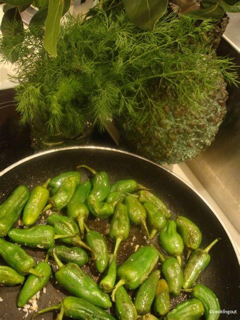 piment en espagnol pimientos de padron un an pour faire cooking out