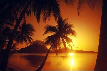 Sunset Beach Desktop Wallpapers