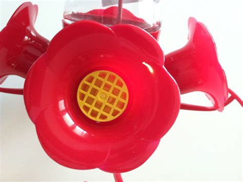 bee guards for hummingbird feeders best hummingbird feeder review of four types of feeders