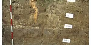 Boden Unter Den Füßen : wie wir den boden unter den f en verlieren umweltbundesamt ~ Lizthompson.info Haus und Dekorationen
