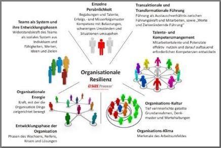 size organisationale resilienz resilienzforum