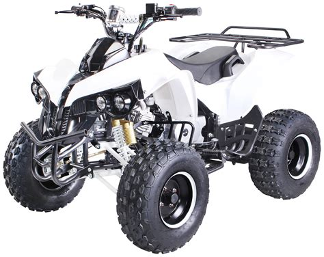kinderquad mit benzin kinder atv s 10 125 cc benzin kinder quads