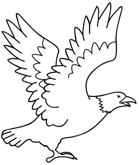 mewarnai burung elang mengepakkan sayap belajarmewarnai info