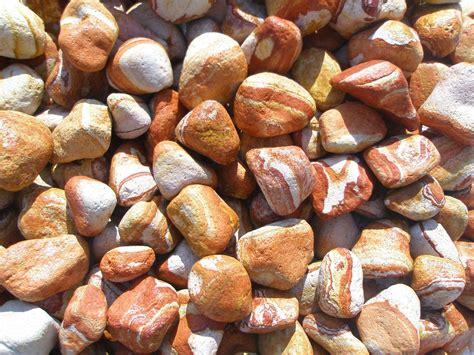 pietre per giardino roccioso pietre per giardino progettazione giardino