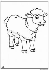 Sheep Coloring Pages Shaun Print Printable Lamb Cute Animal Magiccolorbook Chipmunks Sheets Christmas Everfreecoloring Cartoon Books Baby sketch template