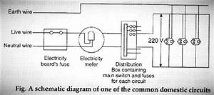 A  Draw A Schematic Labelled Diagram Of Domestic Electric