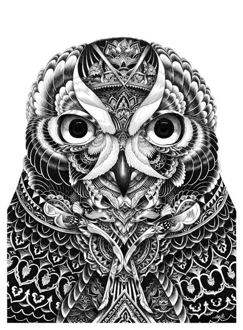 Tattoo style illustration! Bizarre vivid portrait | Art, Owl
